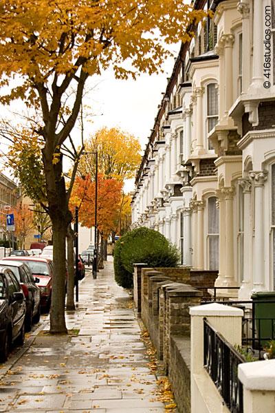 North London Autumn