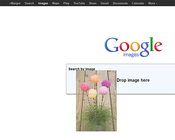 image recognition Google search