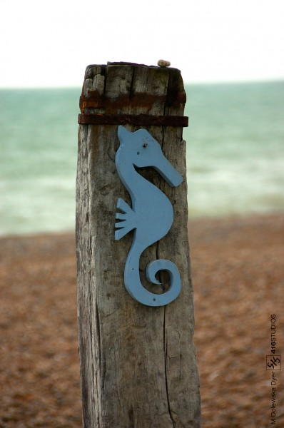 wwpw2014 Brighton & Hove seahorse pebble beach rusty